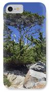 Coastal Trees In California's Point Lobos State Natural Reserve IPhone Case by Bruce Gourley