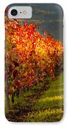 Color On The Vine IPhone Case by Bill Gallagher