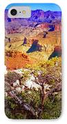 Colours Within The Canyon IPhone Case by Tara Turner