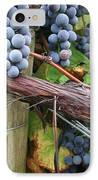 Concord Purple IPhone Case by Wendy Raatz Photography