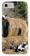 Cow Country Buffet IPhone Case