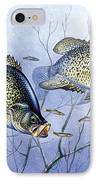Crappie Brush Pile IPhone Case by JQ Licensing