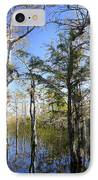 Cypress Swamp IPhone Case by Rudy Umans