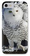 Dance Of Glory - Snowy Owl IPhone Case