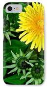 Dandelion Farm IPhone Case by Frozen in Time Fine Art Photography