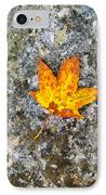 Duet IPhone Case by Wendy J St Christopher