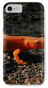 Eastern Newt Red Eft IPhone Case