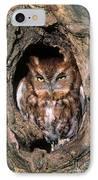 Eastern Screech Owl - Fs000810 IPhone Case