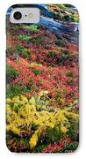 Enchanted Colors IPhone Case