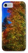Fall Foliage Palette IPhone Case