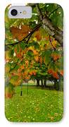 Fall Maple Tree In Foggy Park IPhone Case