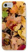 Fall Maples IPhone Case by Steven Ralser