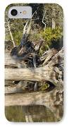 Fallen Trees Reflected In A Beach Tidal Pool IPhone Case