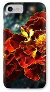 Firework IPhone Case by Lucy D