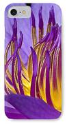 Flaming Heart IPhone Case by Susan Candelario
