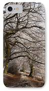 Frosted Path IPhone Case by Anne Gilbert
