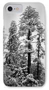 Frozen Beauty IPhone Case by Betty Depee