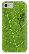 Gecko IPhone Case by Aged Pixel