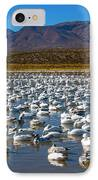 Geese At Bosque Del Apache IPhone Case by Kurt Van Wagner
