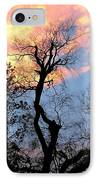 Gnarled Tree Silhouette IPhone Case