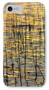 Golden Lake Ripples IPhone Case by James BO  Insogna
