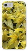 Golden Poinsettias IPhone Case