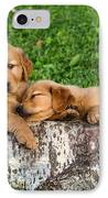 Golden Retriever Puppies IPhone Case
