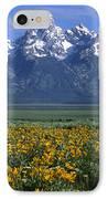 Grand Teton Summer IPhone Case by Sandra Bronstein