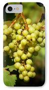 Grapes - Yummy And Healthy IPhone Case by Christine Till