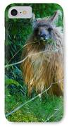 Grass Is Always Greener - Llama IPhone Case by Jordan Blackstone