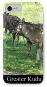 Greater Kudu IPhone Case