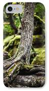 Green Forest IPhone Case by Aaron Aldrich