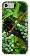 Growing Season IPhone Case by Frozen in Time Fine Art Photography
