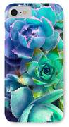 Hens And Chicks Series - Deck Blues IPhone Case by Moon Stumpp