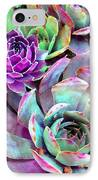 Hens And Chicks Series - Urban Rose IPhone Case