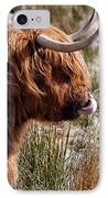 Highland Coo With Tongue In Nose IPhone Case
