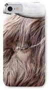 Highland Cow Color IPhone Case by John Farnan