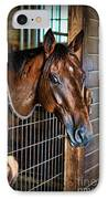 Horse In A Box Stall II - Horse Stable IPhone Case by Lee Dos Santos