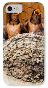 Hungry Baby Swallows - Antelope Island - Utah IPhone Case