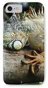 Iguana IPhone Case by Jelena Jovanovic