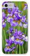 Irises IPhone Case by Elena Elisseeva