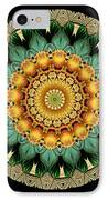 Kaleidoscope From Old Entomology Illustration Of Butterflies IPhone Case by Amy Cicconi