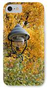 Lamp In The Autumn Leaves IPhone Case