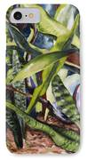 Languid Cactii IPhone Case by Lisa Boyd