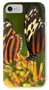 Large Tiger Butterflies IPhone Case