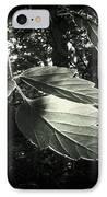 Last Rays II IPhone Case by Jessica Myscofski