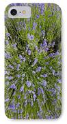 Lavender Explosion IPhone Case by Tim Gainey
