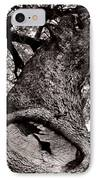 Lightning Tree  IPhone Case by Trish Mistric