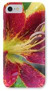 Lily In My Patio IPhone Case