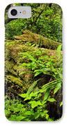 Lush Temperate Rainforest IPhone Case by Elena Elisseeva